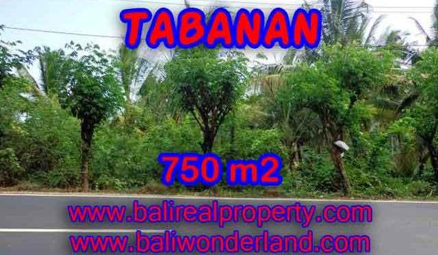 DIJUAL TANAH MURAH DI TABANAN BALI TJTB138 – KESEMPATAN INVESTASI PROPERTY DI BALI