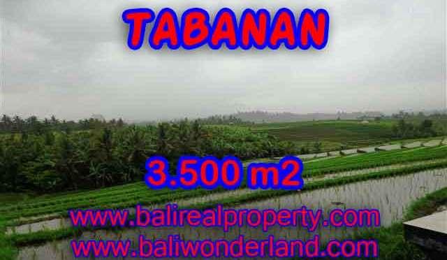 DIJUAL MURAH TANAH DI TABANAN BALI TJTB141 - PELUANG INVESTASI PROPERTY DI BALI