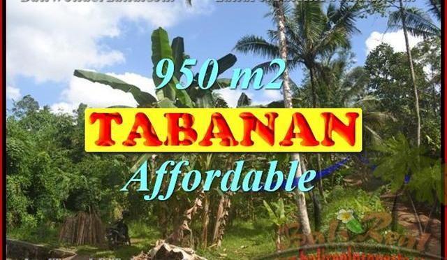 TANAH DI TABANAN BALI DIJUAL TJTB146 - PELUANG INVESTASI PROPERTY DI BALI