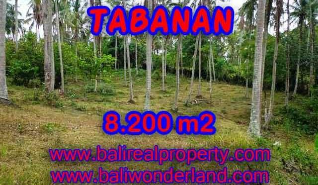 MURAH ! DIJUAL TANAH DI TABANAN BALI TJTB142