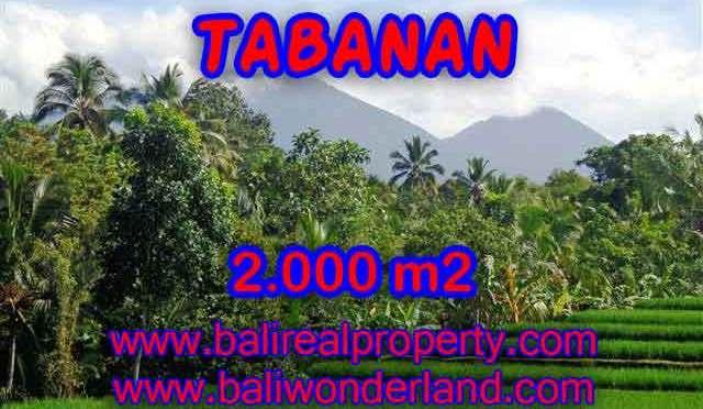 DI JUAL TANAH DI TABANAN BALI TJTB121 – PELUANG INVESTASI PROPERTY DI BALI