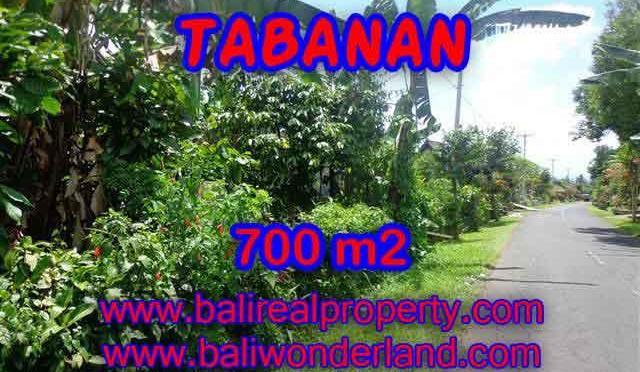 INVESTASI PROPERTI DI BALI - DIJUAL TANAH MURAH DI TABANAN TJTB090