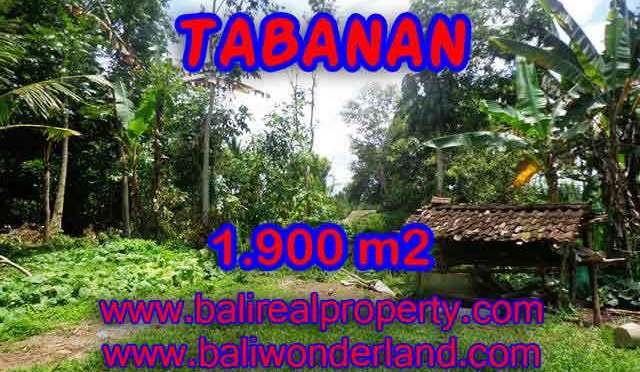 DI JUAL TANAH DI TABANAN BALI TJTB091 - PELUANG INVESTASI PROPERTY DI BALI