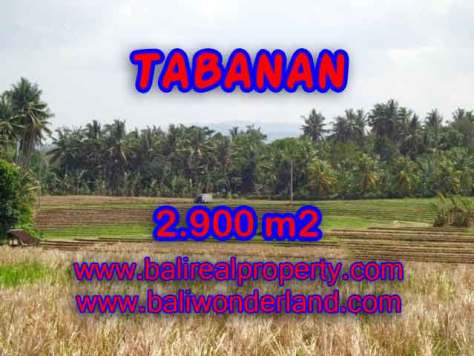 TANAH MURAH DI TABANAN DIJUAL RP 470.000 / M2 - TJTB136