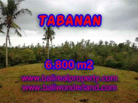 TANAH DIJUAL DI TABANAN MURAH TJTB140 - PELUANG INVESTASI PROPERTY DI BALI