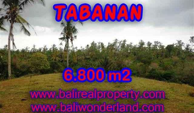 TANAH DIJUAL DI TABANAN MURAH TJTB140 – PELUANG INVESTASI PROPERTY DI BALI