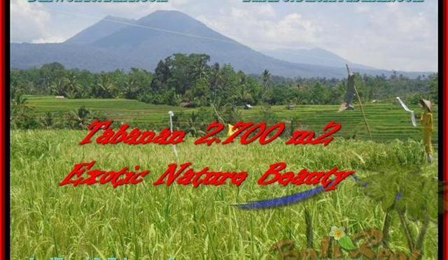 TANAH di TABANAN BALI DIJUAL Untuk INVESTASI TJTB175