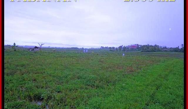 JUAL MURAH TANAH di TABANAN 23 Are View laut, sawah dan gunung