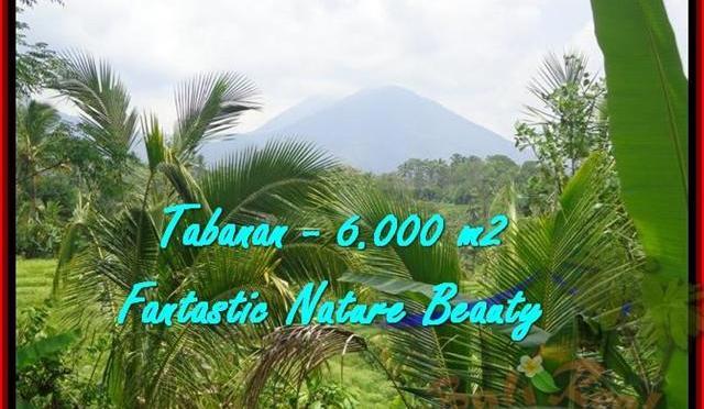 TANAH di TABANAN JUAL 6.000 m2 View Gunung, sawah, sungai dan Laut Selatan