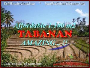 JUAL TANAH di TABANAN BALI 1.100 m2  View kebun dan sawah