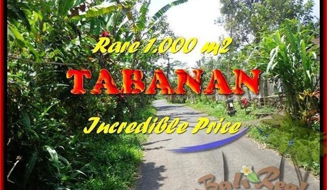 INVESTASI PROPERTY, TANAH MURAH di TABANAN BALI TJTB171