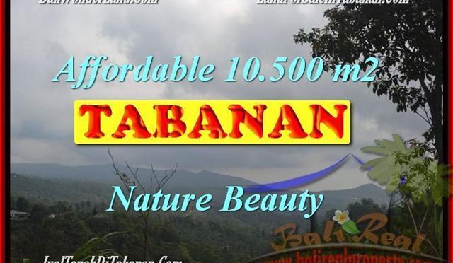 JUAL MURAH TANAH di TABANAN 10,500 m2 di Sukasada