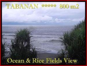 JUAL TANAH MURAH di TABANAN BALI 8 Are View laut, sawah dan gunung