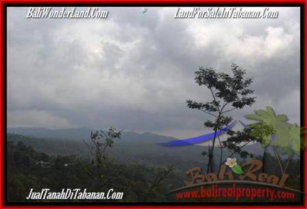 TANAH di TABANAN BALI DIJUAL MURAH 10,500 m2 View gunung dan kebun