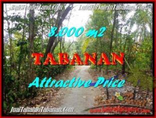 DIJUAL TANAH di TABANAN 80 Are di Tabanan Selemadeg