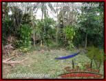 TANAH di TABANAN BALI DIJUAL MURAH 3,600 m2 View Kebun