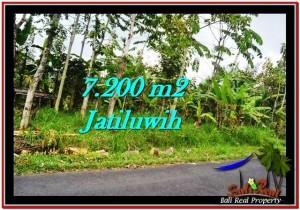 TANAH JUAL MURAH TABANAN 72 Are View Gunung ,sawah