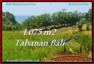 TANAH di TABANAN JUAL MURAH 10.75 Are View Laut dan Gunung