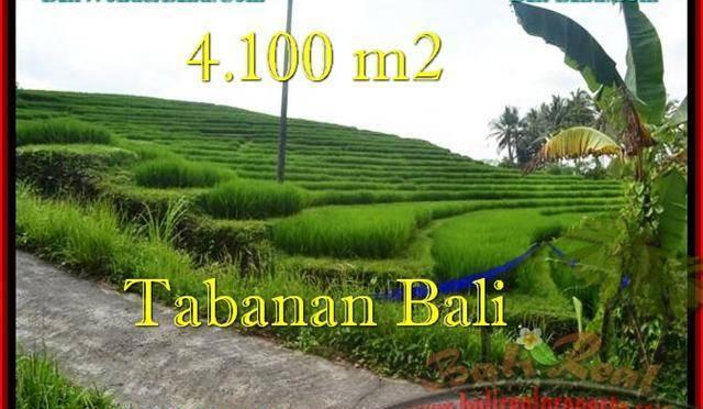 TANAH MURAH DIJUAL di TABANAN BALI 41 Are di Tabanan Selemadeg