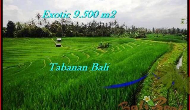 INVESTASI PROPERTY, TANAH di TABANAN BALI DIJUAL MURAH TJTB210