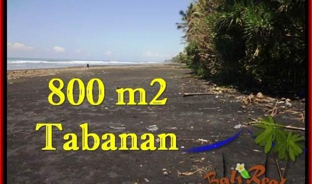 JUAL TANAH di TABANAN BALI 800 m2  Tepi Pantai ( Beachfront ) View Sawah