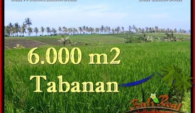 TANAH DIJUAL MURAH di TABANAN TJTB267