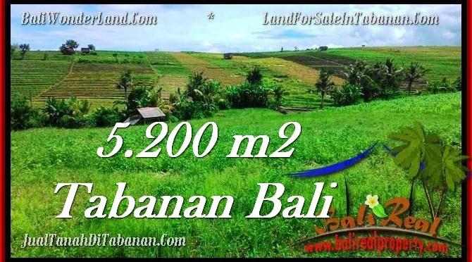 TANAH MURAH di TABANAN BALI TJTB281