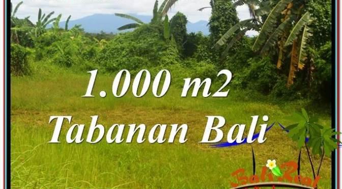 TANAH di TABANAN BALI DIJUAL MURAH 1,000 m2 View Laut, Gunung dan sawah