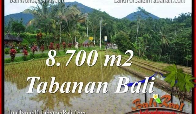 DIJUAL TANAH di TABANAN 87 Are di Tabanan Penebel