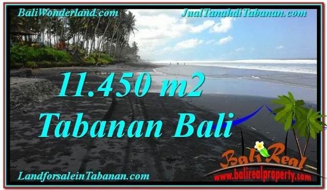 JUAL TANAH MURAH di TABANAN BALI 11,450 m2 di Tabanan Kerambitan