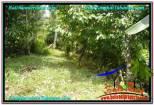 JUAL TANAH di TABANAN 1,200 m2 View kebun dan sungai
