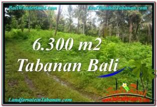 DIJUAL MURAH TANAH di TABANAN 6,300 m2 di Tabanan Selemadeg