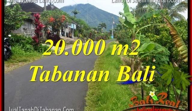 TANAH MURAH di TABANAN 200 Are di Tabanan Penebel