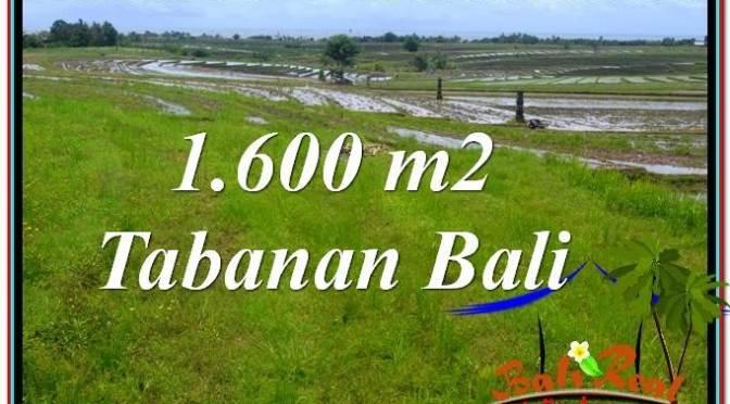 TANAH MURAH  di TABANAN BALI DIJUAL 1,600 m2  View Laut, Gunung dan sawah