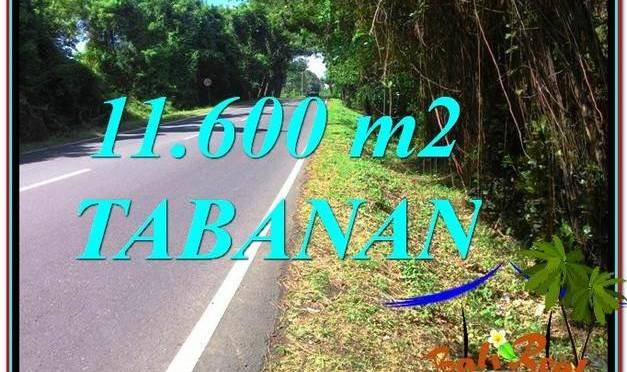 TANAH MURAH DIJUAL di TABANAN 116 Are di Tabanan Selemadeg