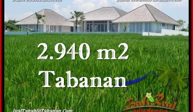 TANAH di TABANAN BALI DIJUAL MURAH 2,940 m2 di Tabanan Selemadeg