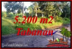 JUAL TANAH di TABANAN BALI 5,200 m2 di Tabanan Selemadeg