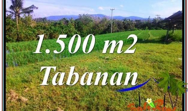 TANAH MURAH  di TABANAN BALI DIJUAL 15 Are View sawah