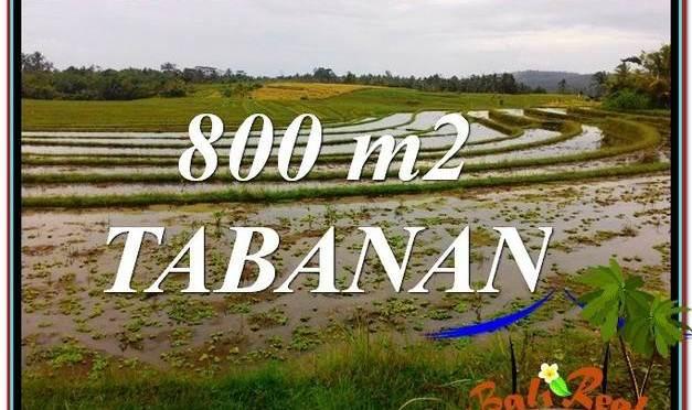TANAH MURAH  di TABANAN BALI DIJUAL 800 m2  View laut dan sawah
