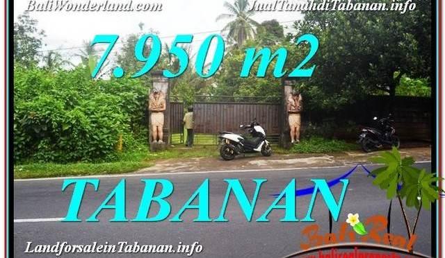 JUAL MURAH TANAH di TABANAN BALI 79.5 Are View Kebun
