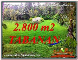 DIJUAL MURAH TANAH di TABANAN Untuk INVESTASI TJTB333
