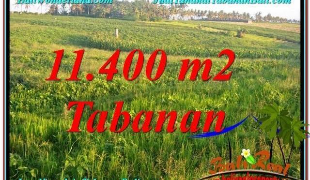 TANAH di TABANAN BALI DIJUAL MURAH 11,400 m2  View Laut, Gunung dan sawah