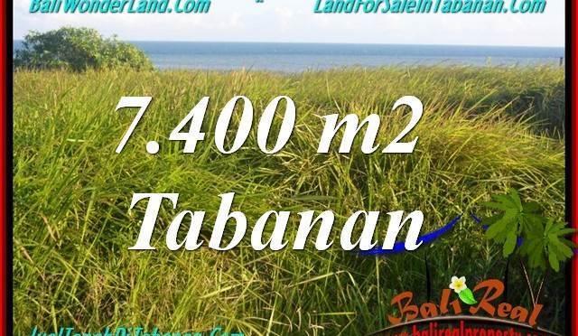 TANAH di TABANAN BALI DIJUAL MURAH 7,400 m2  View Laut, Gunung dan sawah