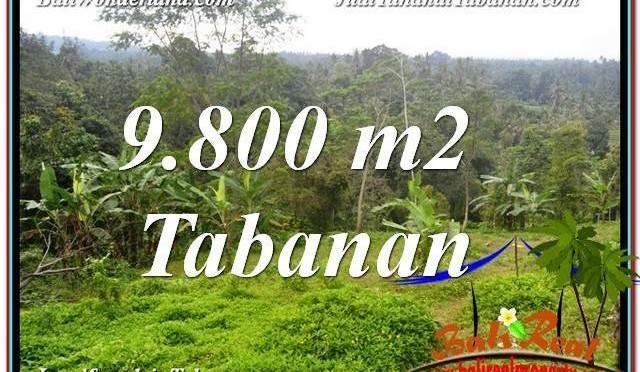 TANAH DIJUAL di TABANAN BALI 9,800 m2 View Laut dan sawah