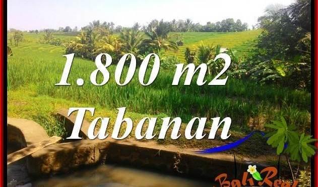 TANAH DIJUAL di TABANAN BALI 18 Are di Tabanan Selemadeg