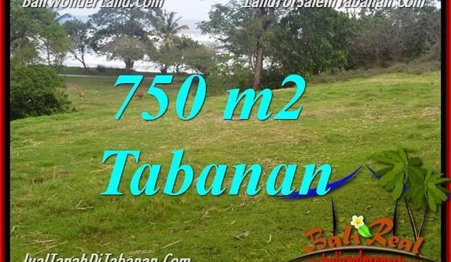 JUAL TANAH MURAH di TABANAN 750 m2 di Tabanan Selemadeg