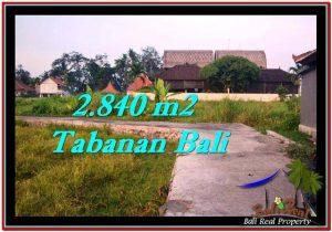 TANAH di TABANAN BALI DIJUAL MURAH 2,840 m2 di Tabanan Tanah Lot