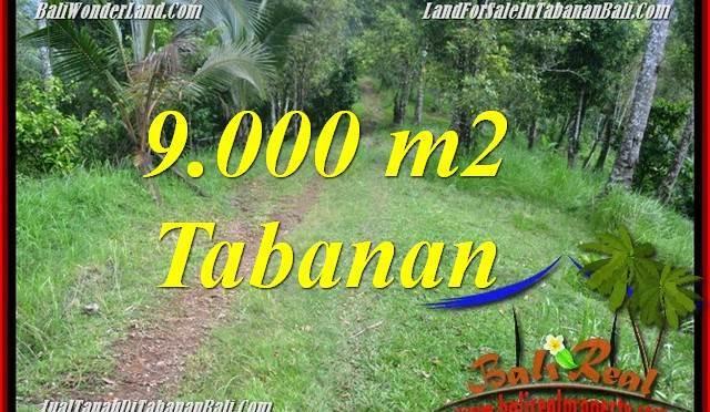 INVESTASI PROPERTY, JUAL TANAH MURAH di TABANAN TJTB364