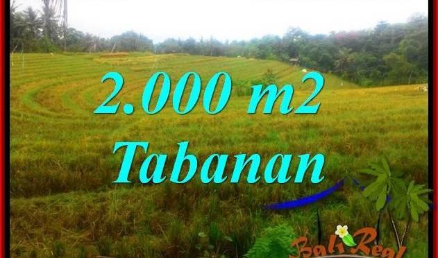 DIJUAL TANAH di TABANAN 2,000 m2 di Tabanan Selemadeg