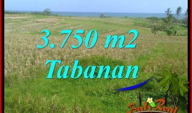 JUAL TANAH MURAH di TABANAN 37.5 Are VIEW LAUT, GUNUNG DAN SAWAH